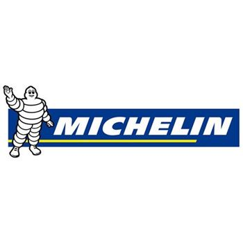 Picture for manufacturer MICHELIN